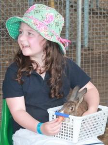 AnimalNursery-rabbit